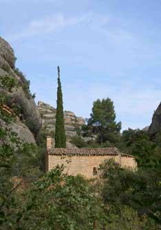 Viñas del Montsant