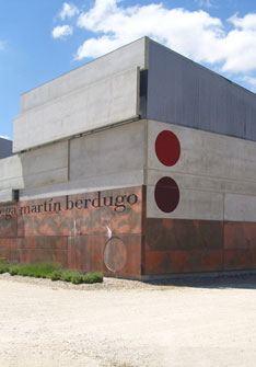 Bodegas y Viñedos Martín Berdugo