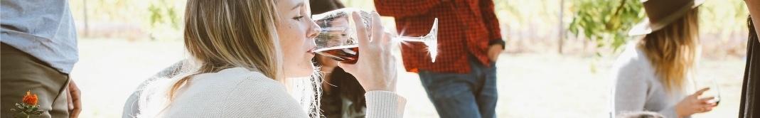 Món del vi