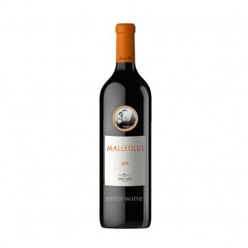 vino malleolus 2018