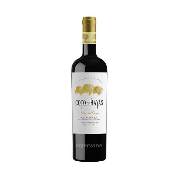vino coto de hayas viñas del cierzo 2013